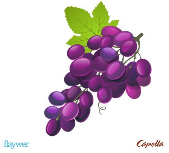 Concord Grape (Stevia)