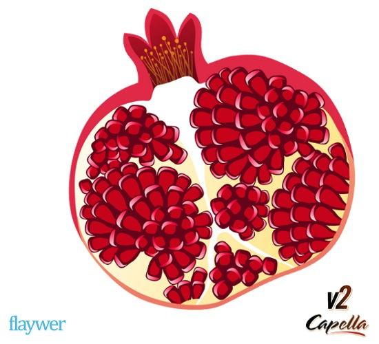 Pomegranate V2 (Granatapfel)