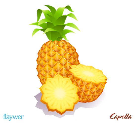 Golden Pineapple (Ananas)